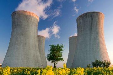 thorium nuclear reactor