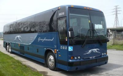 greyhound-bus-carrier-guide-1
